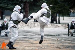 Рукопашный бой в армии: общие положения обучения