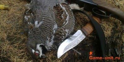 Что нужно знать про охотничий нож