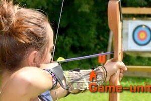 Топ тайн про лук и стрелы в одной статье
